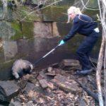 Scottish SPCA rescue badger stuck down mine shaft in Bonnyrigg