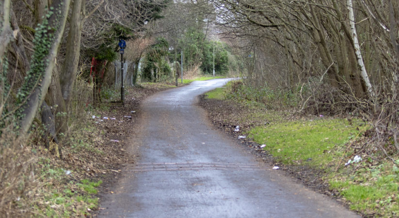 Investigation launched after man wearing balaclava approaches woman on cycle path