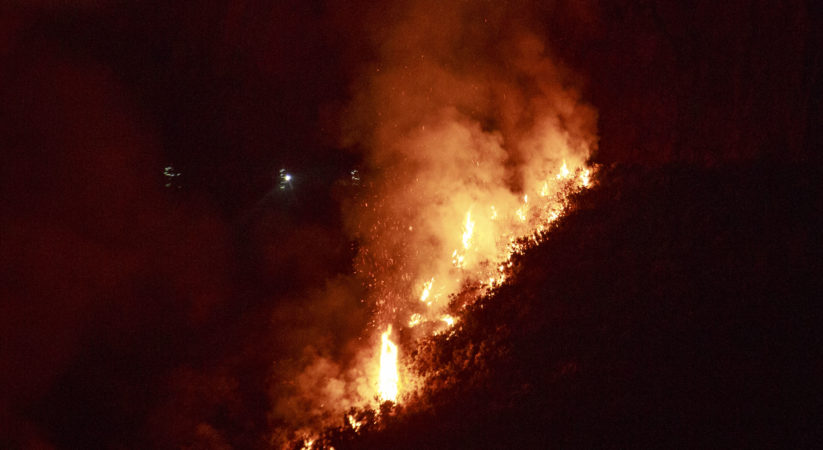Firefighters in attendance at Arthur's Seat gorse fire
