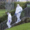 No criminality in Dalmeny Street Park incident